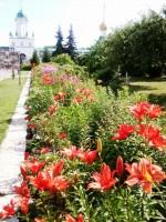 Цветы и цветники Спасо-Яковлевского монастыря
