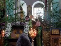 Праздник Святой Троицы в Спасо-Яковлевском Димитриевом монастыре 19 июня 2016 г.