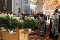 Чин выноса Плащаницы. Спасо-Яковлевский Димитриев монастырь, 29 апреля 2016 г.