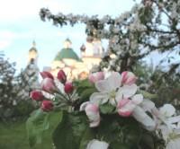 Цветущий сад Яковлевского монастыря