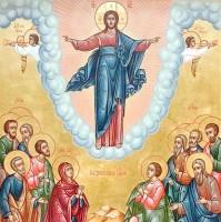 Образ Вознесение Господне