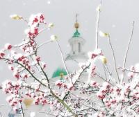Купол Димитриевского собора. Фото Валерия Абрамова