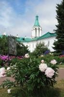 Цветники Спасо-Яковлевского монастыря. 2019 г.
