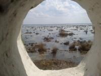 Ростовское озеро в середине мая. Вид с монастырской стены