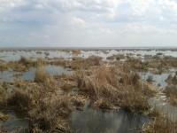 </p> <p>Ростовское озеро в середине мая. Вид со смотровой площадки </p> <p>монастыря